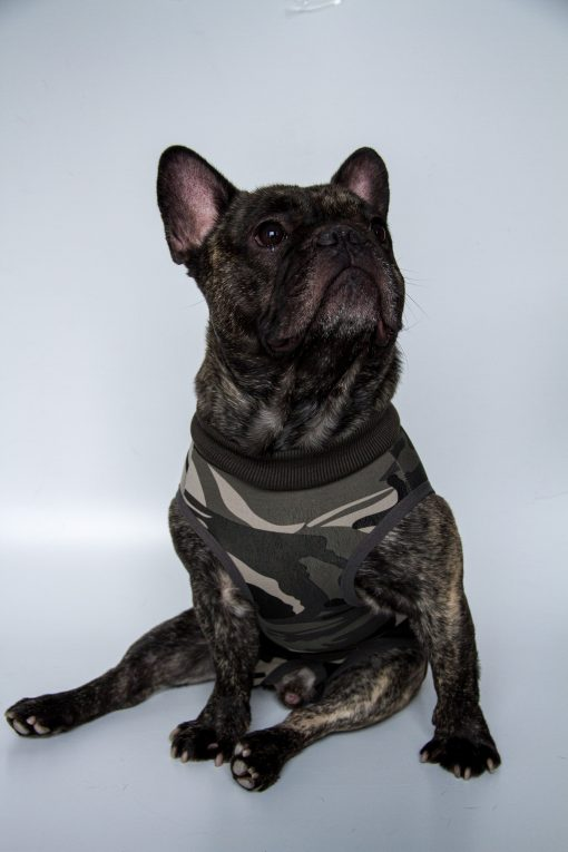 Ochranný-oblek-pre-psa